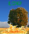Fire Weather Index: LOW